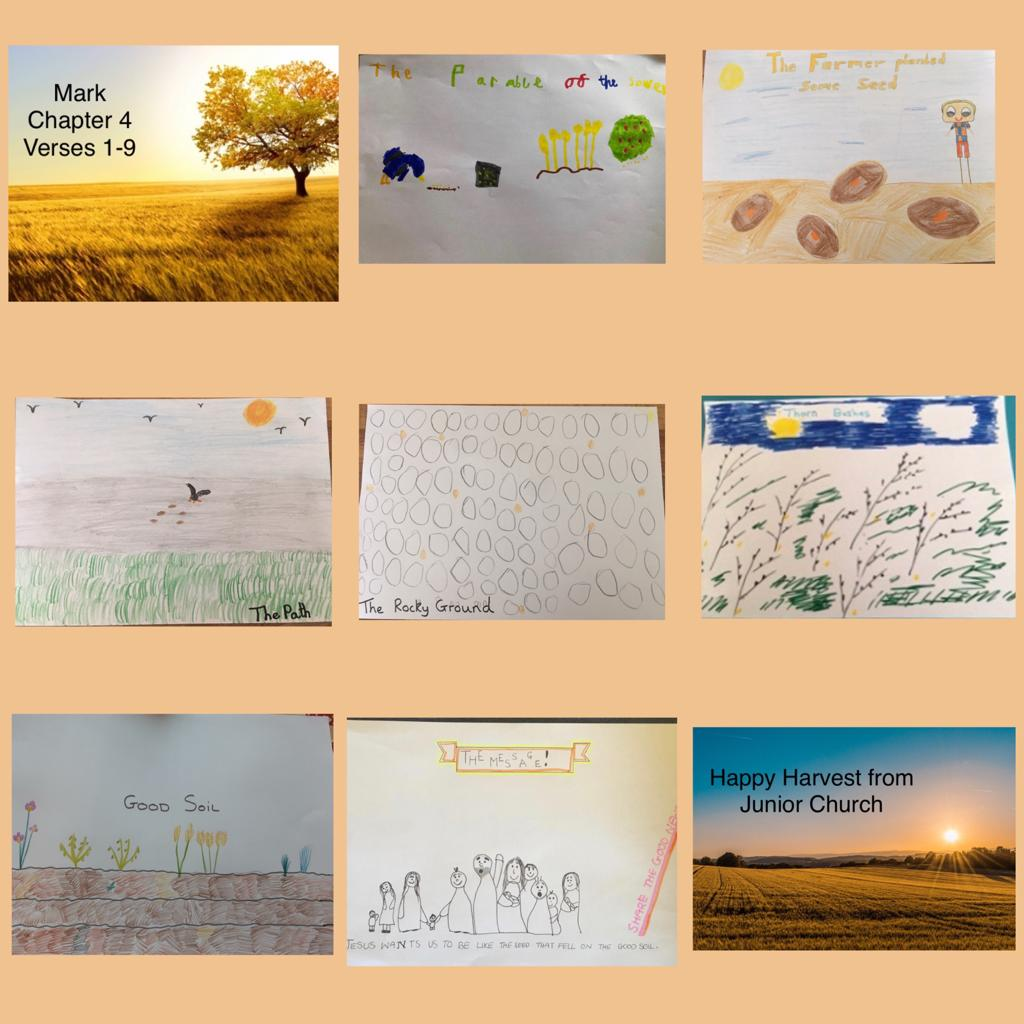 Harvest-Pictures-J.C.